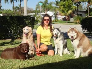 Kat-Walking-Dogs-11
